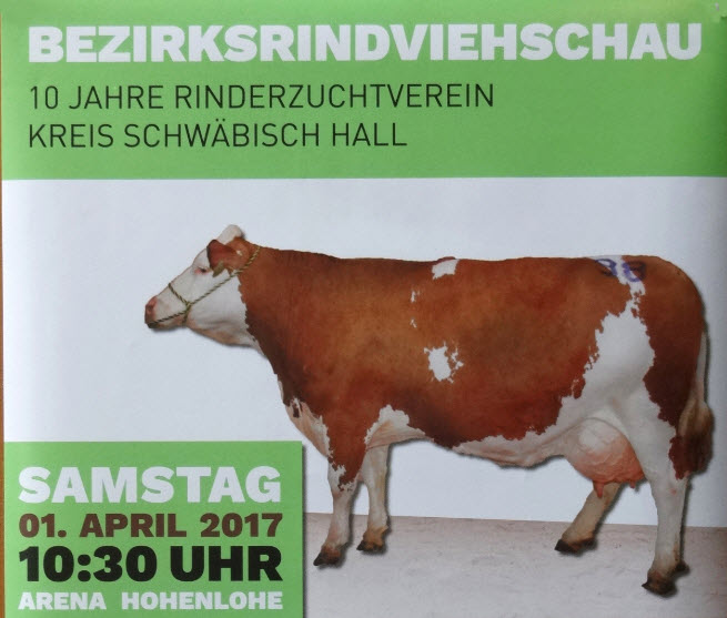 Bezirksrindviehschau des Rinderzuchtvereins Schwäbisch Hall